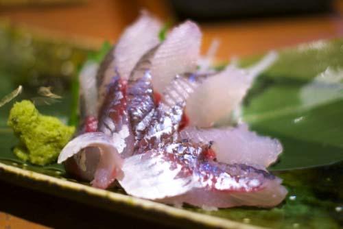 とびうお/トビウオ/飛魚